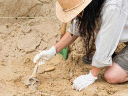 Bir Arkeolog Ne Yapar?