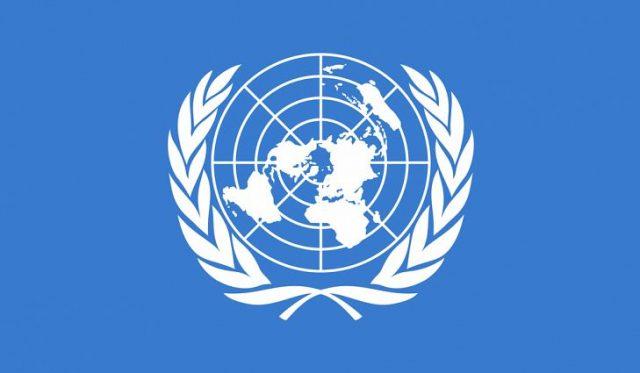 Birleşmiş Milletler (BM)