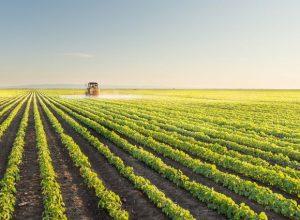 Ekonomisi Tarıma Bağlı Ülkeler