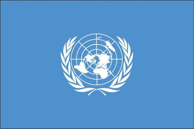 Birleşmiş Milletler (BM) Nedir?