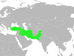 Bağdat Paktı Nedir, Kimler Arasında ve Ne Zaman İmzalanmıştır?