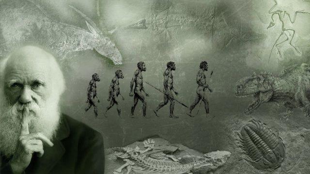 Charles Darwin'in Evrim Hakkındaki Görüşleri