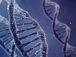 DNA'nın Yapısı Nasıldır, Özellikleri Nelerdir?