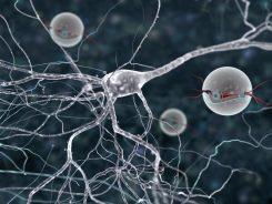 Hayatımızı Kolaylaştıran Nanoteknoloji Nedir, Kullanım Alanları Nelerdir?