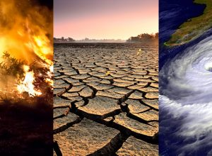 İklim Değişikliği ve Sonuçları