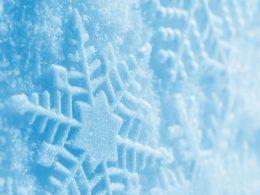 Kar Yağdığında Ortalık Neden Sessizleşir?