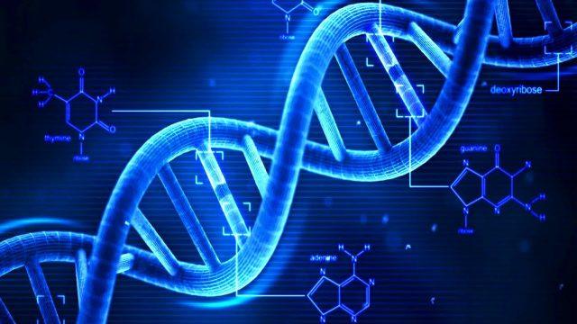 Soyu Tükenmiş DNA Yeniden Canlanıyor