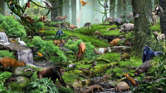 Canlıların Sınıflandırılmasında Kullanılan Farklı Bilimsel Yaklaşımlar