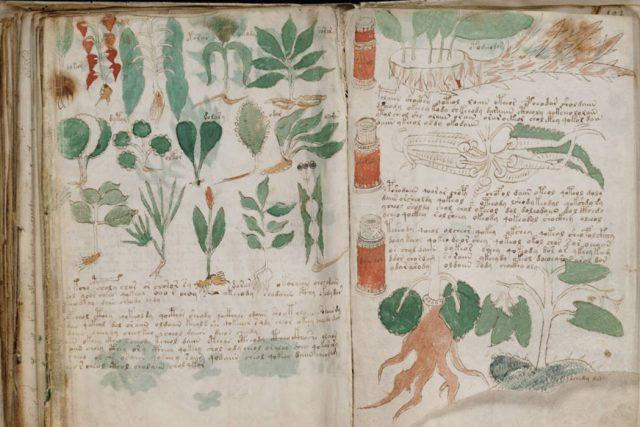 Dünyanın En Gizemli Kitabı: Voynich El Yazması