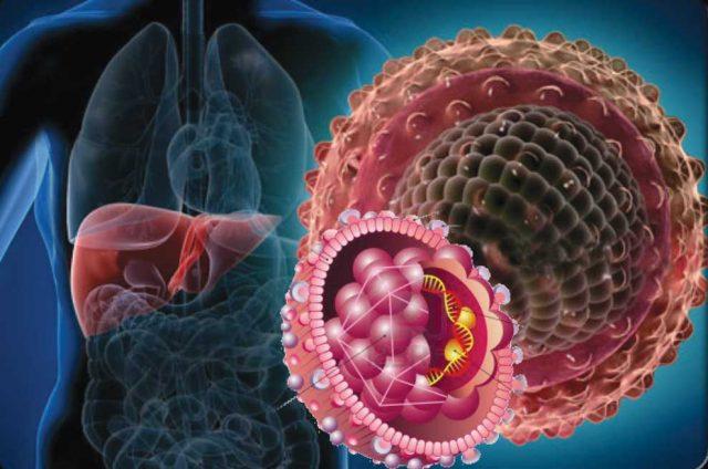 Hepatit Hastalığı Nedir, Korunma Yolları Nelerdir?