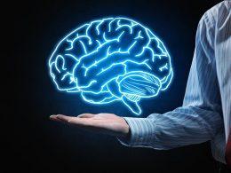 Beyninizin Yüzde Kaçını Kullanıyorsunuz?