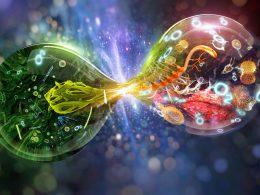 Biyolojinin Tarihsel Gelişim Sürecine Katkı Sağlayan Uygarlıklar