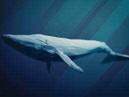 Deniz Canlıları Ne Kadar Büyük Olabilir?
