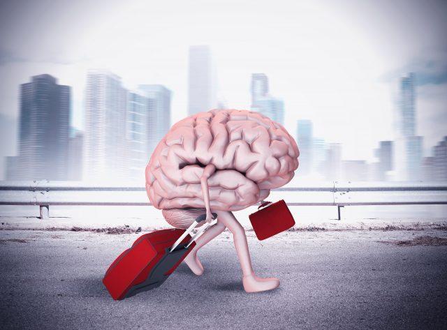 Beyin Göçü Nedir?