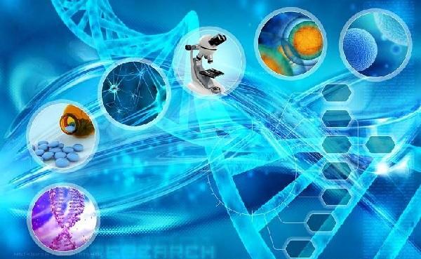 Biyoteknoloji Nedir, Uygulama Alanları Nelerdir?