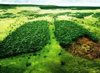 Doğal Kaynakların Neden Dikkatli Tüketilmesi Gerekmektedir?