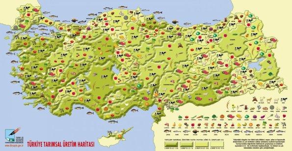 Türkiye Tarımsal Üretim Haritası