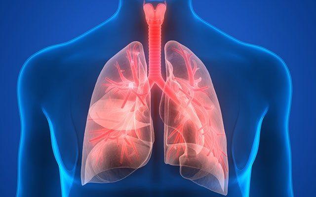 Zatürre Hastalığına Karşı Bitkisel Öneriler
