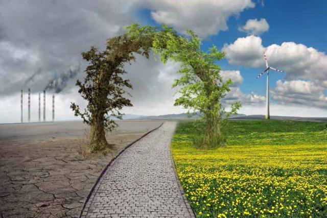 Ekosistemdeki Bozulmaların Çevreye Etkileri