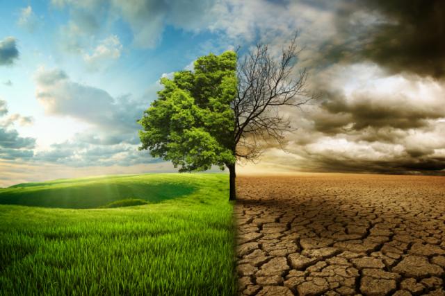 Küresel İklim Değişimiyle Nasıl Başa Çıkabiliriz