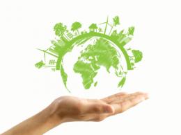 Başlıca Uluslararası Çevre Örgütleri