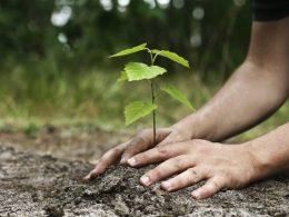 Doğanın Cömertliği Nereye Kadar?