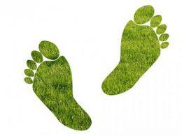 Ekolojik Ayak İzi Nedir?
