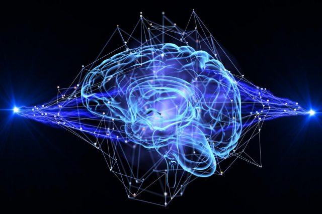Karmaşık Davranışların Ardındaki Bütünleştirici Güç: Beyin