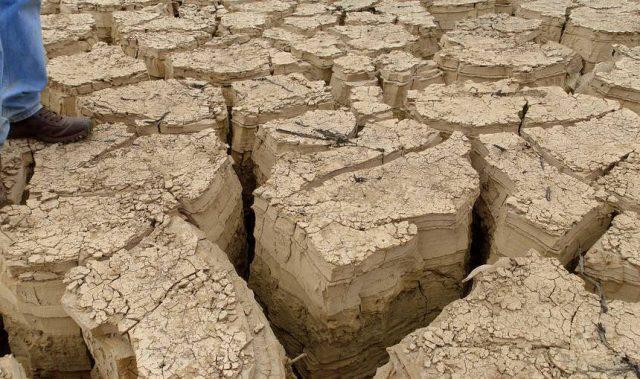 Yılda 743 Milyon Ton Toprak Kaybediyoruz!