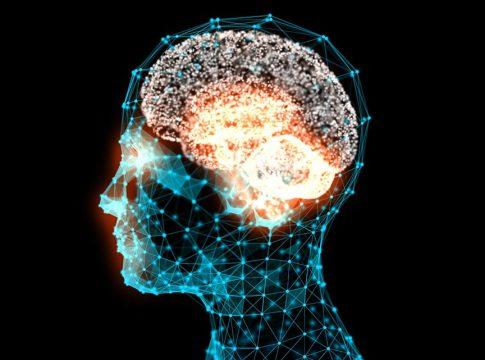 Zeka ve IQ Nedir, Nasıl Ölçülür?