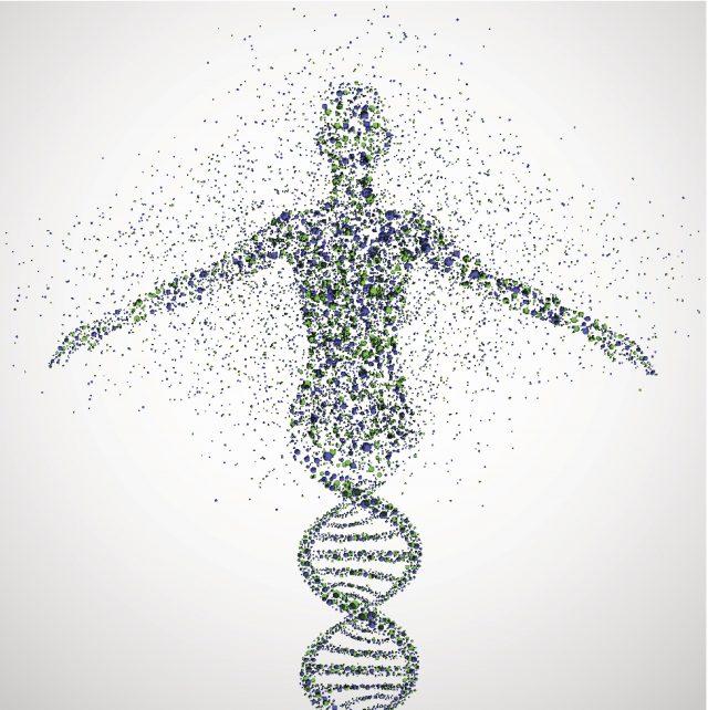 İnsan Genomu Projesindeki Gelişmeler ve Değerlendirmeler