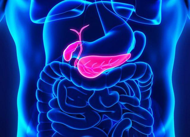 Pankreasın Yapısı Nasıldır, Vücuttaki Görevleri Nelerdir?