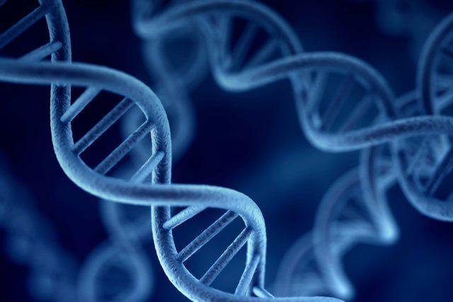 Epigenetik Nedir?