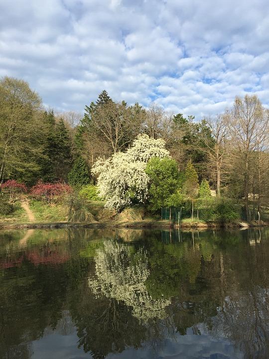 İstanbul'un Keşfedilmemiş Cenneti: Atatürk Arboretumu