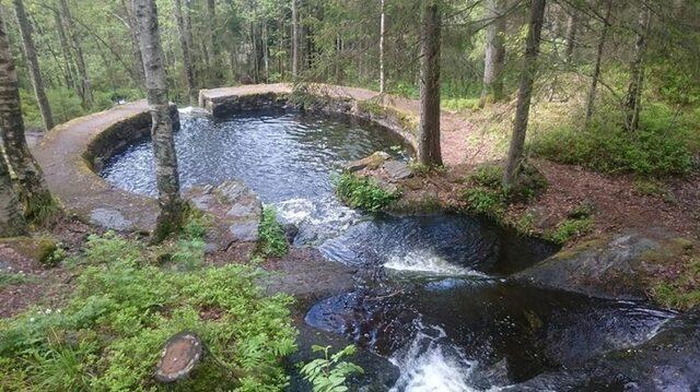 Ormanda doğal yüzme havuzu