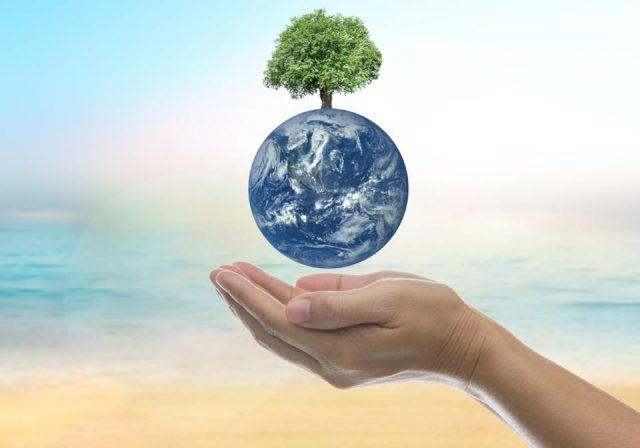 Çevre Sorunlarını Önlemede Bireye Düşen Görevler
