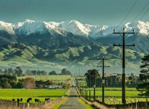 Yeni Zelanda'nın Çevre Politikası