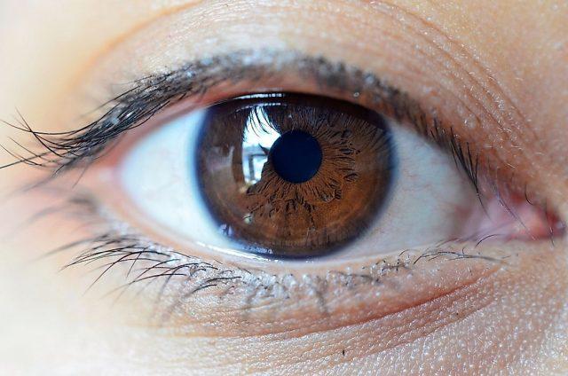 Göz Rengine Göre Dünya Nüfusu
